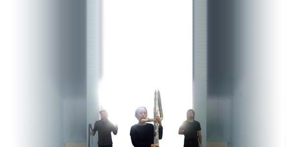 Echoplasme // Détours de Babel